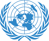 Over 110 Not 44 Were Killed By Boko Haram On Rice Field In Borno – UN Says