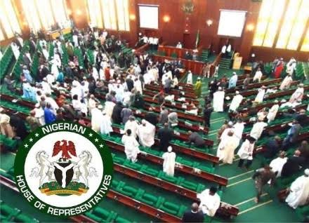 JUST IN: A Bill To Grant Nigerians Permission To Carry Arms For Self Defense Surfaces At The House Of Reps